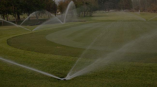 Venice Irrigation